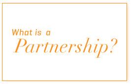 the-partner-1